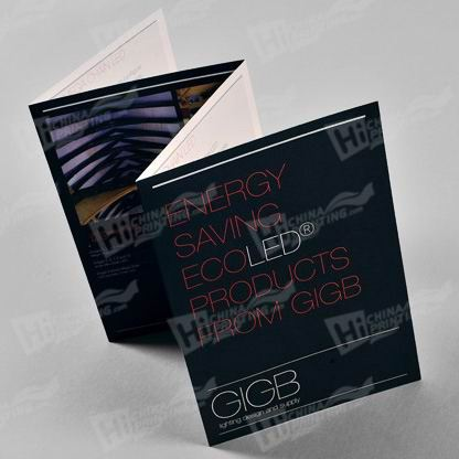 Foldout Brochure Printing