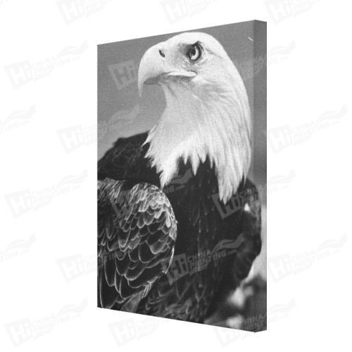 Eagle Canvas Printing