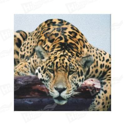 Panther Canvas Printing