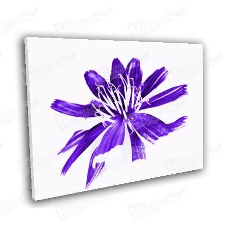 Purple Flower Canvas Printing