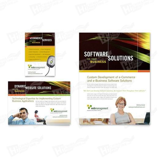 Internet Software Flyers Printing